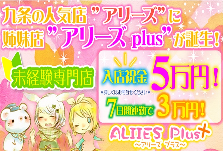 V2アリーズplus様-PC用